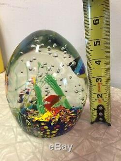 Murano Glass Large Tropical Reef Fish Aquarium Egg Sculpture 7 Lbs
